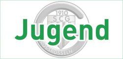 SC Großrosseln - Internetseite - Bilder - Jugend